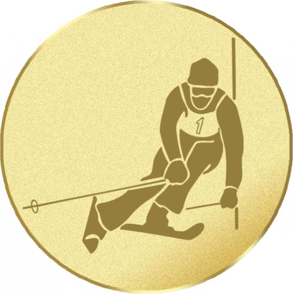 Wintersport Emblem G13I